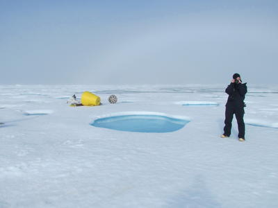 Picture of Mary-Louise standing on sea ice